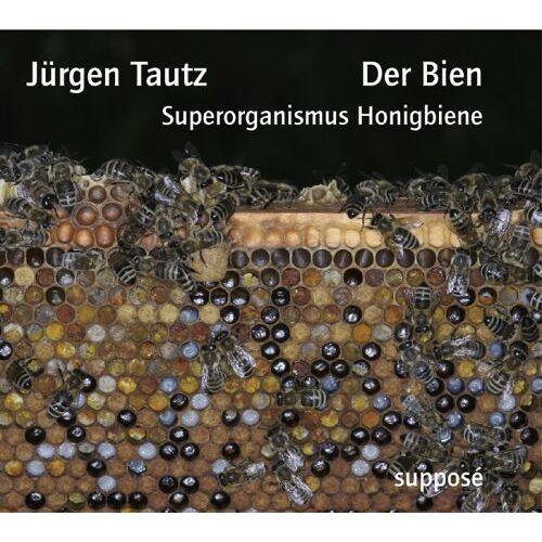 - Der Bien: Superorganismus Honigbiene - Preis vom 15.05.2021 04:43:31 h