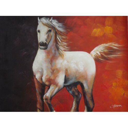 - Schöne Ölgemälde auf Leinwand Weiß Pferd 50 X 60 cm - Preis vom 05.09.2020 04:49:05 h
