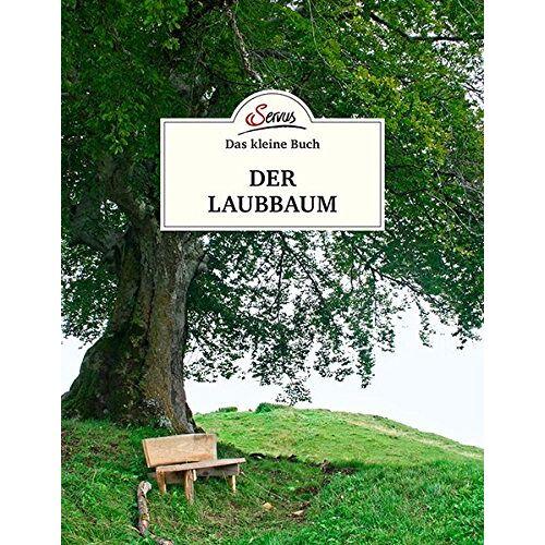 Julia Kospach - Das kleine Buch: Der Laubbaum - Preis vom 05.05.2021 04:54:13 h