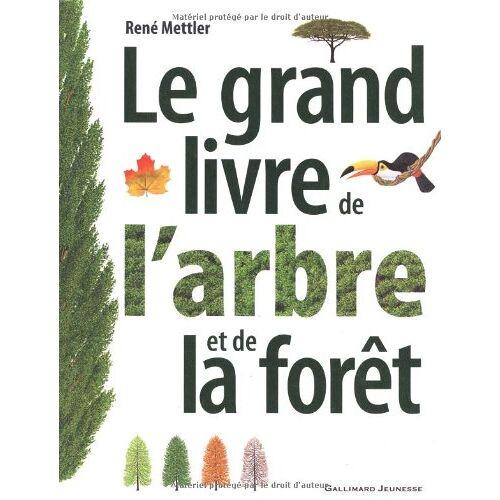 René Mettler - Le grand livre de l'arbre et de la forêt - Preis vom 06.05.2021 04:54:26 h