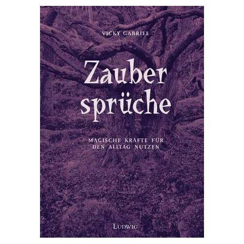 Vicky Gabriel - Zaubersprüche - Preis vom 18.10.2020 04:52:00 h
