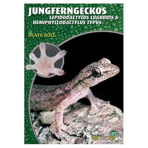 Beate Röll - Jungferngeckos. Lepidodactylus lugubris und Hemiphyllodactylus typus - Preis vom 06.09.2020 04:54:28 h