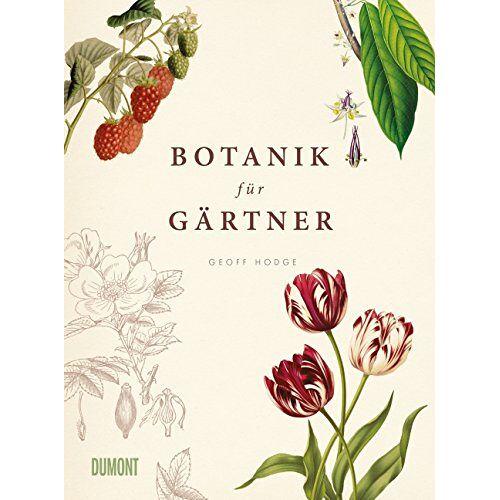 Geoff Hodge - Botanik für Gärtner: Von Achselknospe bis Zwiebelpflanze. Die Wissenschaft der Pflanzen - Preis vom 22.02.2021 05:57:04 h