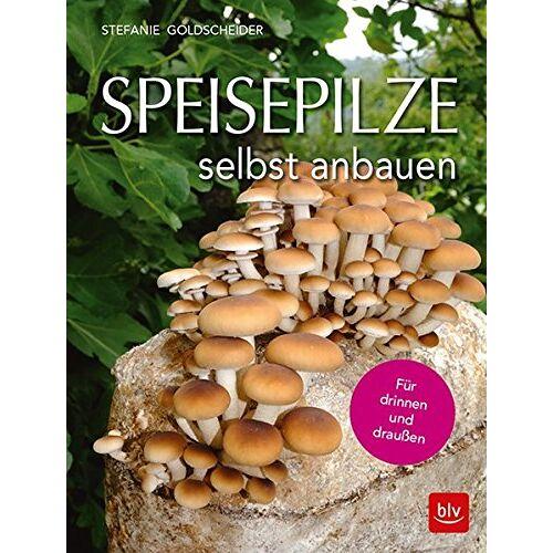 Stefanie Goldscheider - Speisepilze selbst anbauen: Für drinnen und draußen - Preis vom 26.02.2021 06:01:53 h