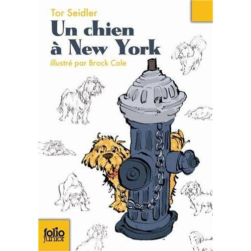 Tor Seidler - Chien a New York (Folio Junior) - Preis vom 28.02.2021 06:03:40 h