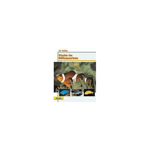 Joachim Frische - Ihr Hobby, Fische im Riffaquarium - Preis vom 28.02.2021 06:03:40 h