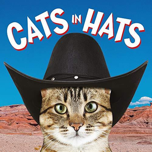 Ammonite Press - Cats in Hats - Preis vom 08.05.2021 04:52:27 h