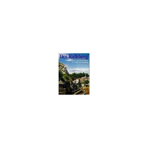 Hans-Peter Sparr - Der Kalkberg. Naturdenkmal und Wahrzeichen der Stadt Bad Segeberg - Preis vom 28.02.2021 06:03:40 h