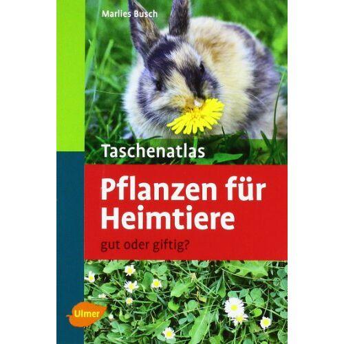Marlies Busch - Taschenatlas Pflanzen für Heimtiere: Gut oder giftig? - Preis vom 21.04.2021 04:48:01 h