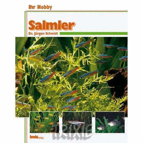- 017374 Salmler / Dr. J. Schmidt - Preis vom 14.01.2021 05:56:14 h