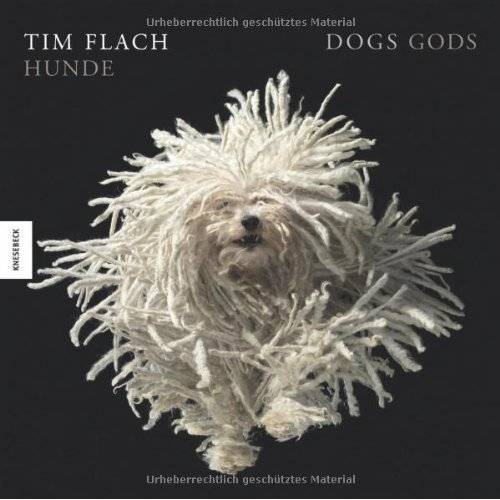 Tim Flach - Hunde. Ein Bildband - Preis vom 31.03.2020 04:56:10 h