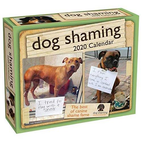 Pascale Lemire - Lemire, P: Dog Shaming 2020 Day-to-Day Calendar - Preis vom 21.10.2020 04:49:09 h
