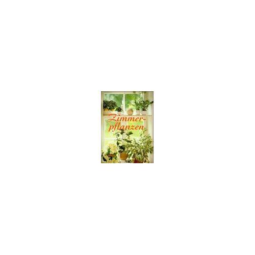 - Zimmerpflanzen - Preis vom 15.05.2021 04:43:31 h