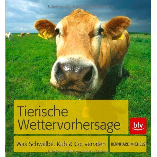Bernhard Michels - Tierische Wettervorhersage: Was Schwalbe, Kuh & Co. verraten - Preis vom 14.05.2021 04:51:20 h