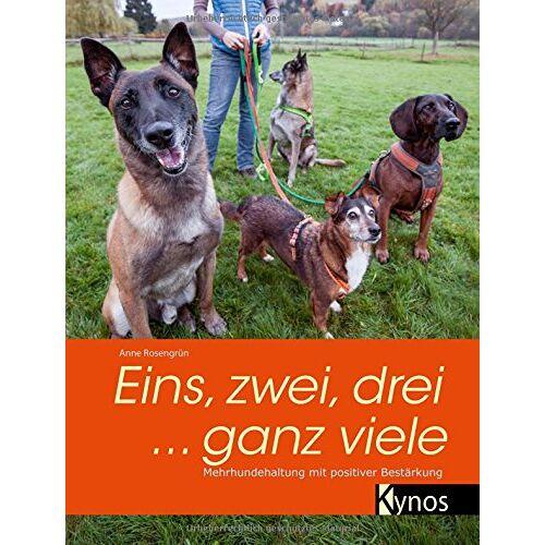 Anne Rosengrün - Eins, zwei, drei ... ganz viele: Mehrhundehaltung mit positiver Bestärkung - Preis vom 19.01.2020 06:04:52 h