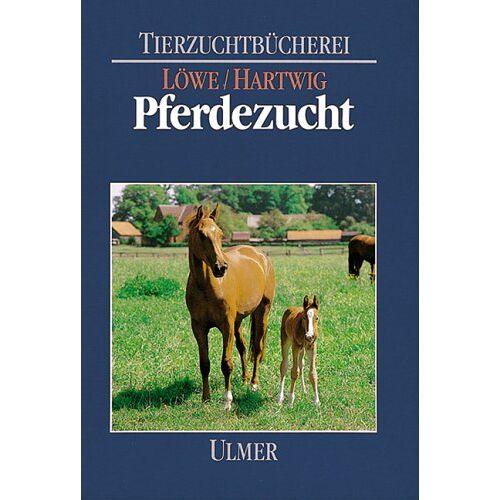 Hans Löwe - Pferdezucht - Preis vom 05.03.2021 05:56:49 h