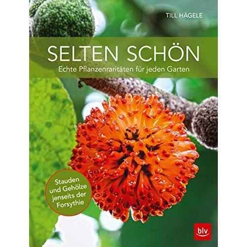 Till Hägele - Selten schön: Echte Pflanzenraritäten für jeden Garten (BLV) - Preis vom 16.05.2021 04:43:40 h