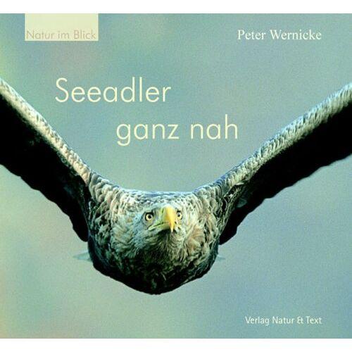 Peter Wernicke - Seeadler ganz nah - Preis vom 20.10.2020 04:55:35 h