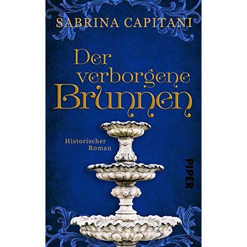 Sabrina Capitani - Der verborgene Brunnen: Historischer Roman aus der Provence - Preis vom 20.10.2020 04:55:35 h