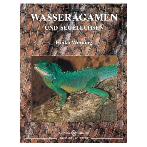 Heiko Werning - Wasseragamen und Segelechsen - Preis vom 08.05.2021 04:52:27 h