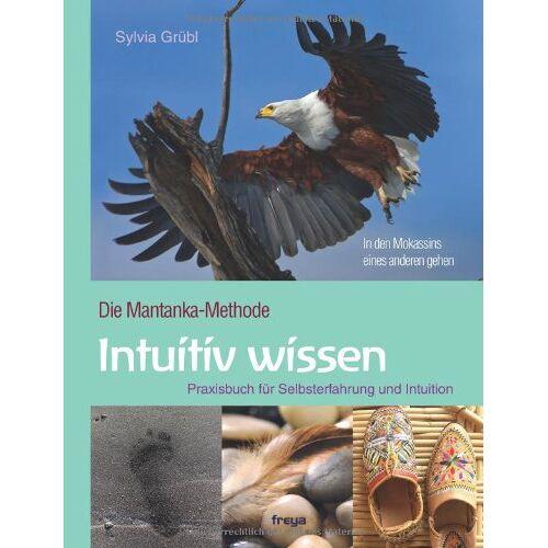Sylvia Grübl - Intuitiv Wissen: Praxisbuch für Selbsterfahrung und Intuition. Die Mantanka-Methode: Die Mantanka-Methode. Praxisbuch für Selbsterfahrung und Intuition - Preis vom 28.10.2020 05:53:24 h