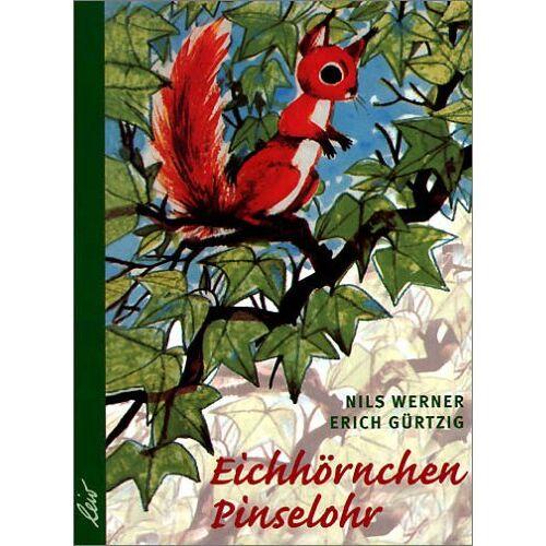 Nils Werner - Eichhörnchen Pinselohr - Preis vom 13.05.2021 04:51:36 h