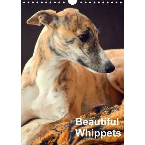 Ula Redl - Beautiful Whippets 2016: Whippets are small english Sighthounds (Calvendo Animals) - Preis vom 08.05.2021 04:52:27 h