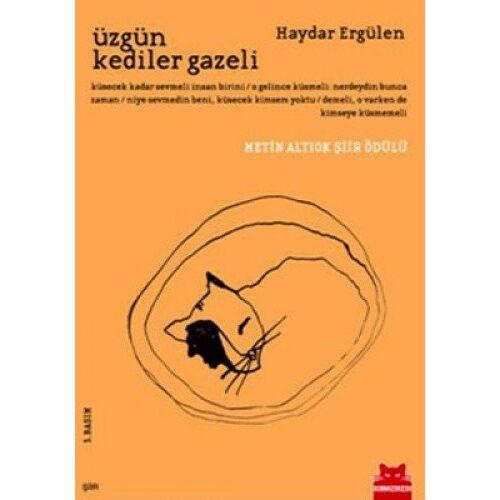 Haydar Ergülen - Üzgün Kediler Gazeli - Preis vom 22.02.2021 05:57:04 h