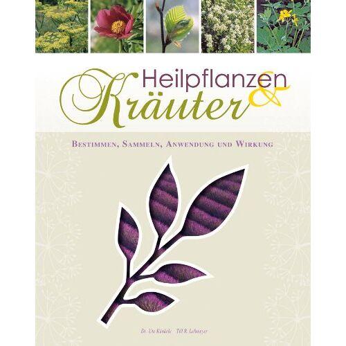 Ute Künkele - Heilpflanzen & Kräuter - Preis vom 24.02.2020 06:06:31 h