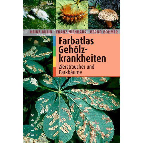 Heinz Butin - Farbatlas Gehölzkrankheiten: Ziersträucher und Parkbäume - Preis vom 26.02.2021 06:01:53 h
