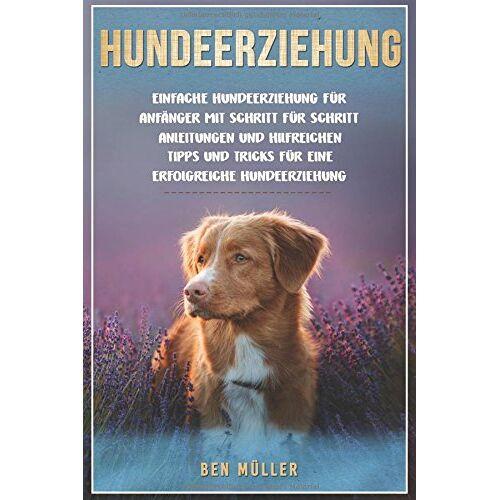 Ben Müller - Hundeerziehung: Einfache Hundeerziehung für Anfänger mit Schritt für Schritt Anleitungen und hilfreichen Tipps und Tricks für eine erfolgreiche Hundeerziehung. - Preis vom 16.07.2019 06:13:35 h