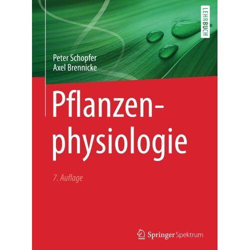 Peter Schopfer - Pflanzenphysiologie - Preis vom 04.09.2020 04:54:27 h