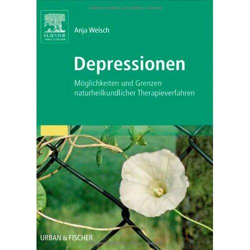 Anja Welsch - Depressionen: Möglichkeiten und Grenzen Naturheilkundlicher Therapieverfahren - Preis vom 22.10.2020 04:52:23 h