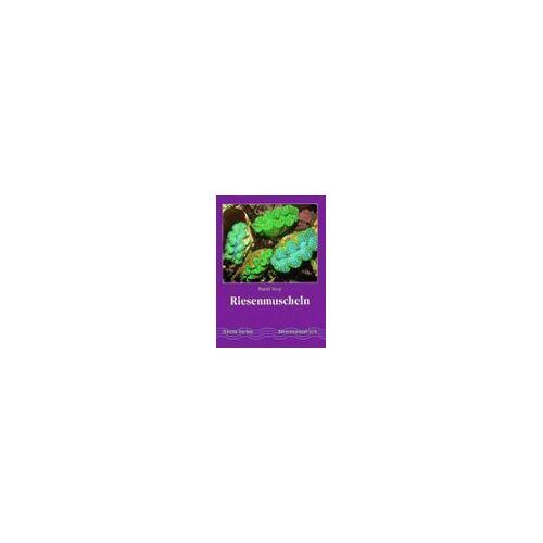 - Riesenmuscheln - Preis vom 14.04.2021 04:53:30 h