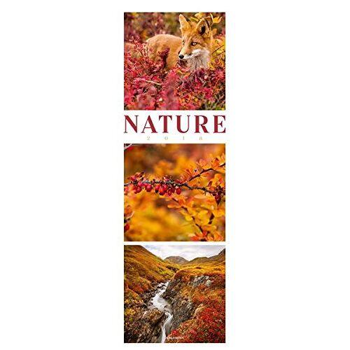 Ackermann Kunstverlag - Nature 2018: NEU - Preis vom 04.08.2019 06:11:31 h