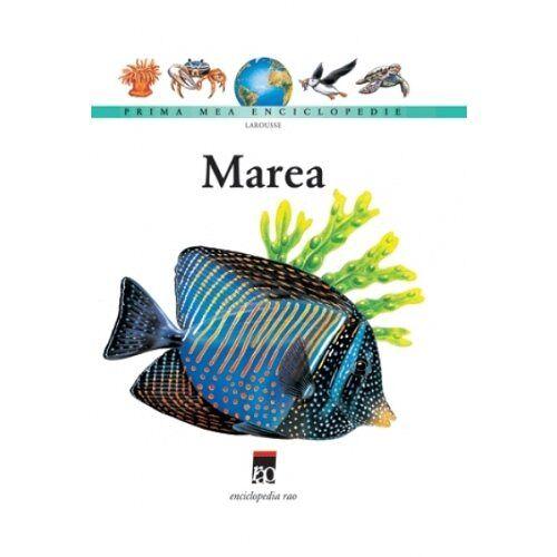 - PME - MAREA - Preis vom 06.09.2020 04:54:28 h