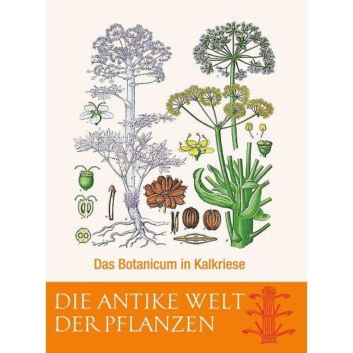 Varusschlacht im Osnabrücker Land gGmbH - Die Antike Welt der Pflanzen: Das Botanicum in Kalkriese - Preis vom 01.03.2021 06:00:22 h