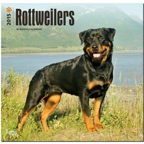 - Rottweilers 2015 - Rottweiler - Preis vom 16.04.2021 04:54:32 h