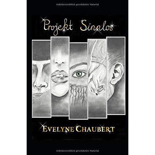Evelyne Chaubert - Projekt Sinnlos (Sinnlos Serie, Band 1) - Preis vom 20.10.2020 04:55:35 h