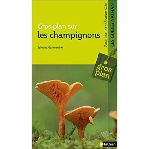 - Gros plan sur les champignons - Preis vom 12.05.2021 04:50:50 h