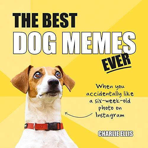 Charlie Ellis - The Best Dog Memes Ever: The Funniest Relatable Memes as Told by Dogs - Preis vom 20.10.2020 04:55:35 h