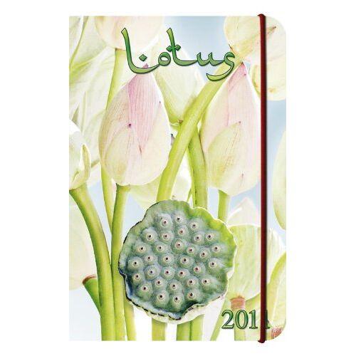 - Lotus 2011 - Preis vom 25.10.2020 05:48:23 h