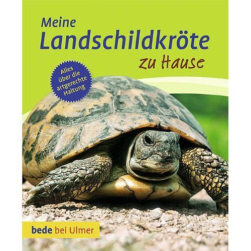 Gerti Keller - Meine Landschildkröte zu Hause - Preis vom 28.02.2021 06:03:40 h