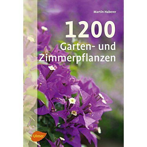 Martin Haberer - 1200 Garten- und Zimmerpflanzen - Preis vom 05.09.2020 04:49:05 h