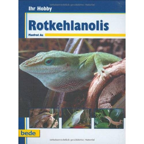 Manfred Au - Ihr Hobby Rotkehlanolis - Preis vom 18.10.2020 04:52:00 h