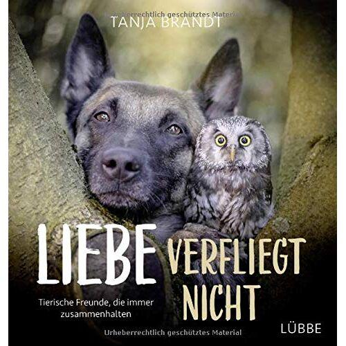 Tanja Brandt - Liebe verfliegt nicht: Tierische Freunde, die immer zusammenhalten - Preis vom 03.05.2021 04:57:00 h