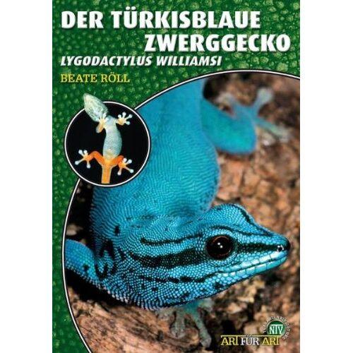 Beate Röll - Art für Art: Der Türkisblaue Zwerggecko: Lygodactylus williamsi - Preis vom 26.02.2021 06:01:53 h