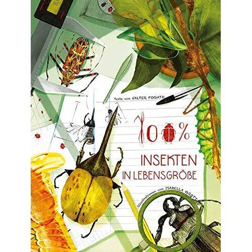 Valter Fogato - 100% Insekten in Lebensgröße - Preis vom 06.09.2020 04:54:28 h