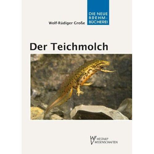 Wolf-Rüdiger Große - Der Teichmolch - Lissotriton vulgaris - Preis vom 26.02.2021 06:01:53 h