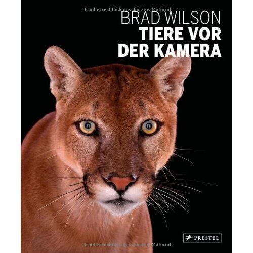 Brad Wilson - Tiere vor der Kamera - Preis vom 18.10.2020 04:52:00 h